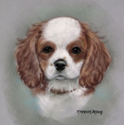 Pastel Portrait of King Charles Spaniel